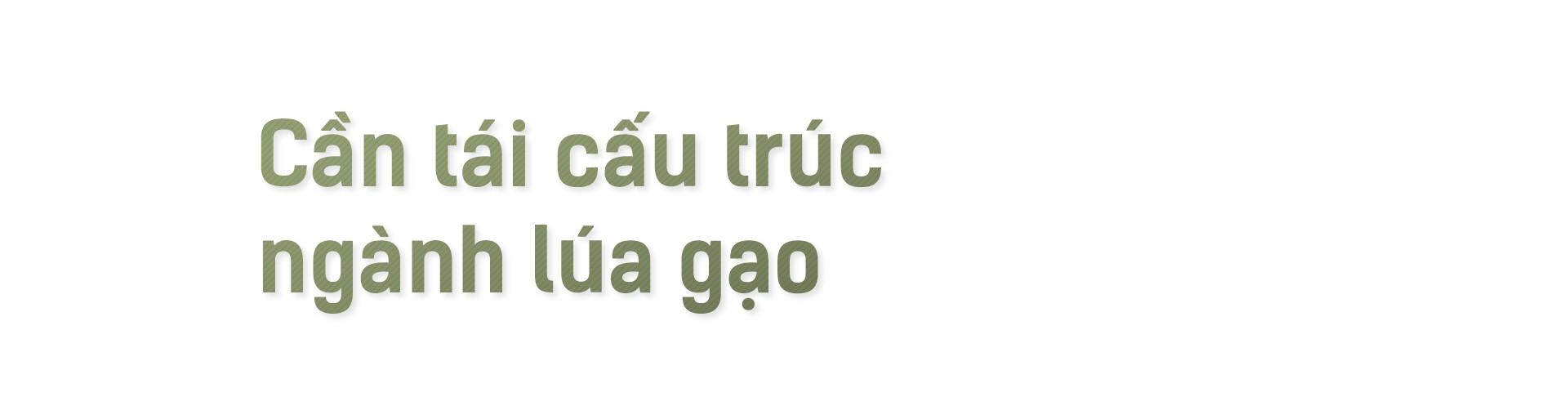Hạt gạo Việt: 30 năm, một nỗi đau đáu về thương hiệu - Ảnh 11.