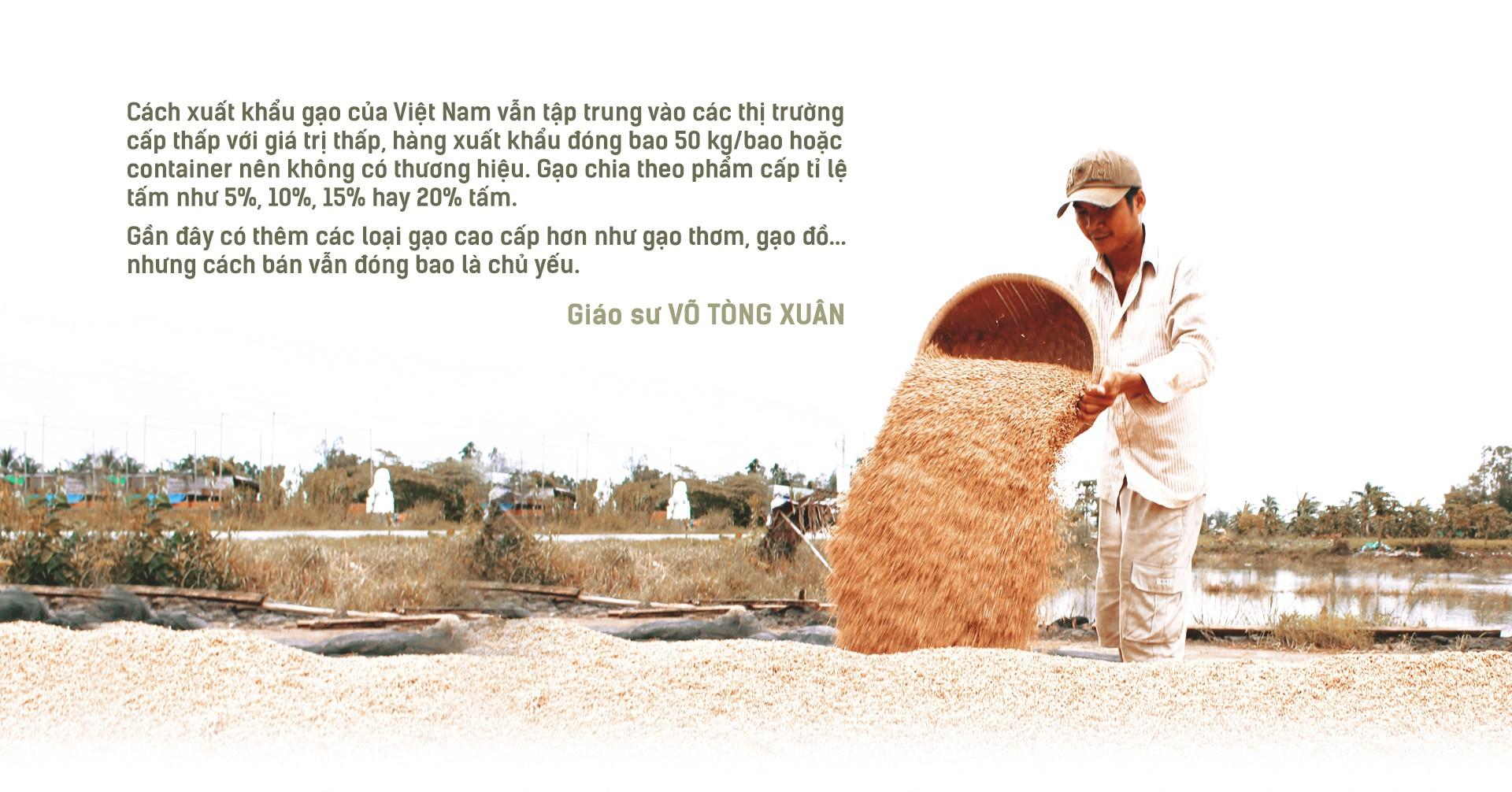 Hạt gạo Việt: 30 năm, một nỗi đau đáu về thương hiệu - Ảnh 3.