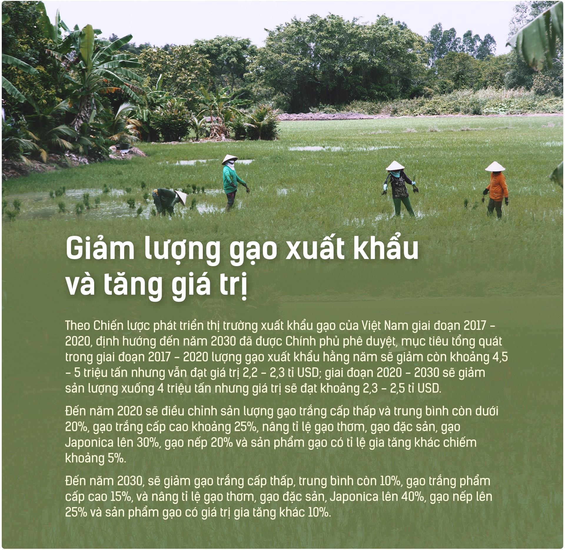 Hạt gạo Việt: 30 năm, một nỗi đau đáu về thương hiệu - Ảnh 13.