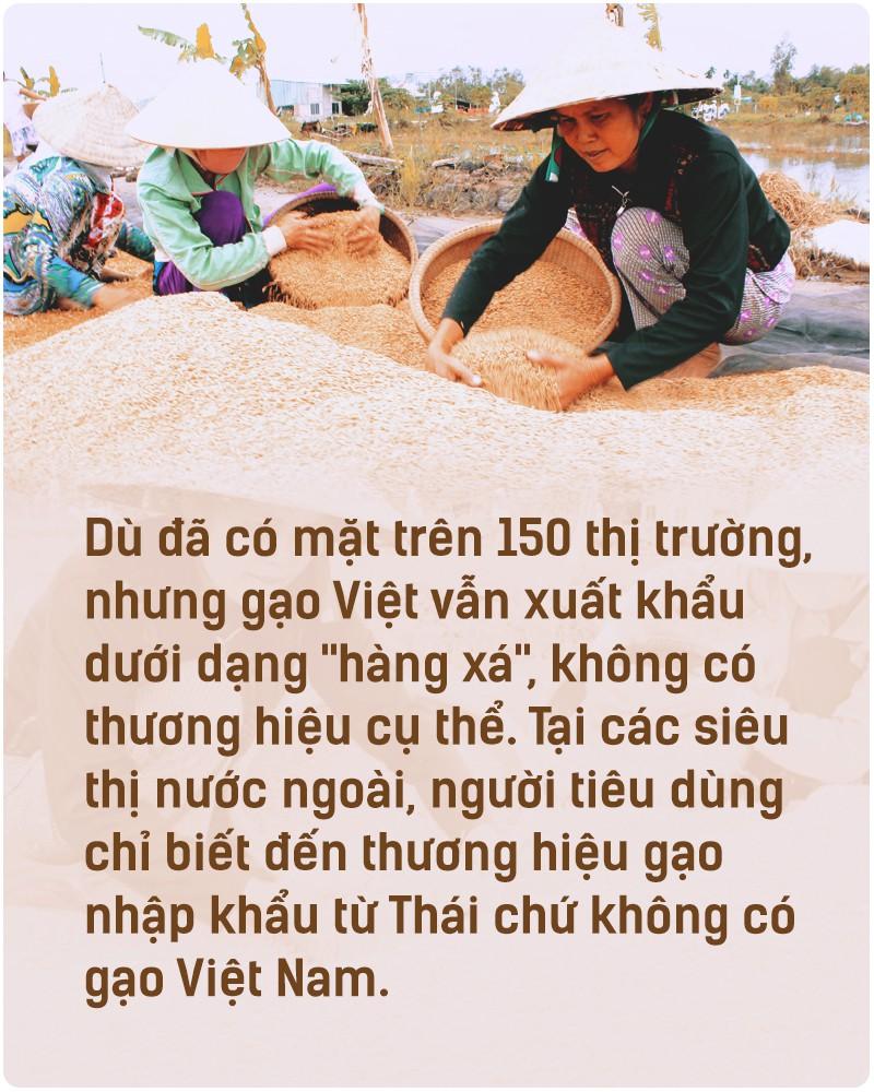 Hạt gạo Việt: 30 năm, một nỗi đau đáu về thương hiệu - Ảnh 2.