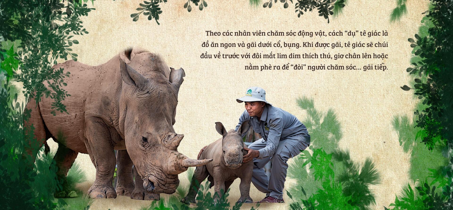 Chúng tôi sinh ra ở Safari - Ảnh 8.