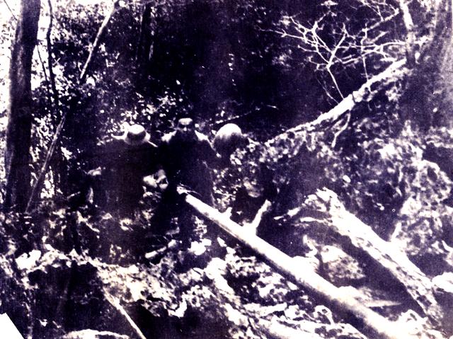 Tướng Đồng Sỹ Nguyên và đường ống xăng dầu vượt Trường Sơn bão lửa - Ảnh 5.
