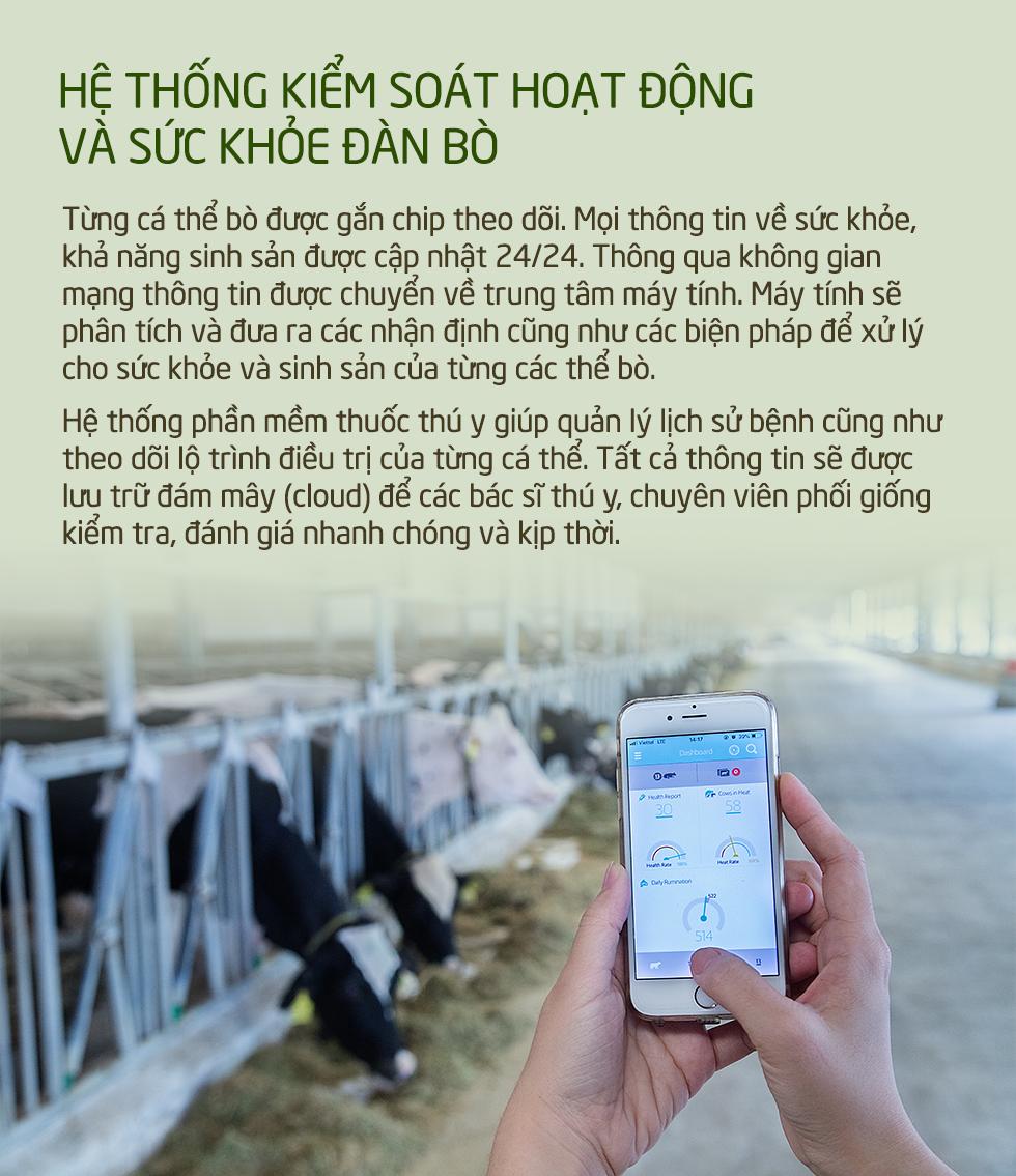Khám phá các tiện nghi chuẩn 4.0 dành cho bò sữa của Vinamilk - Ảnh 8.