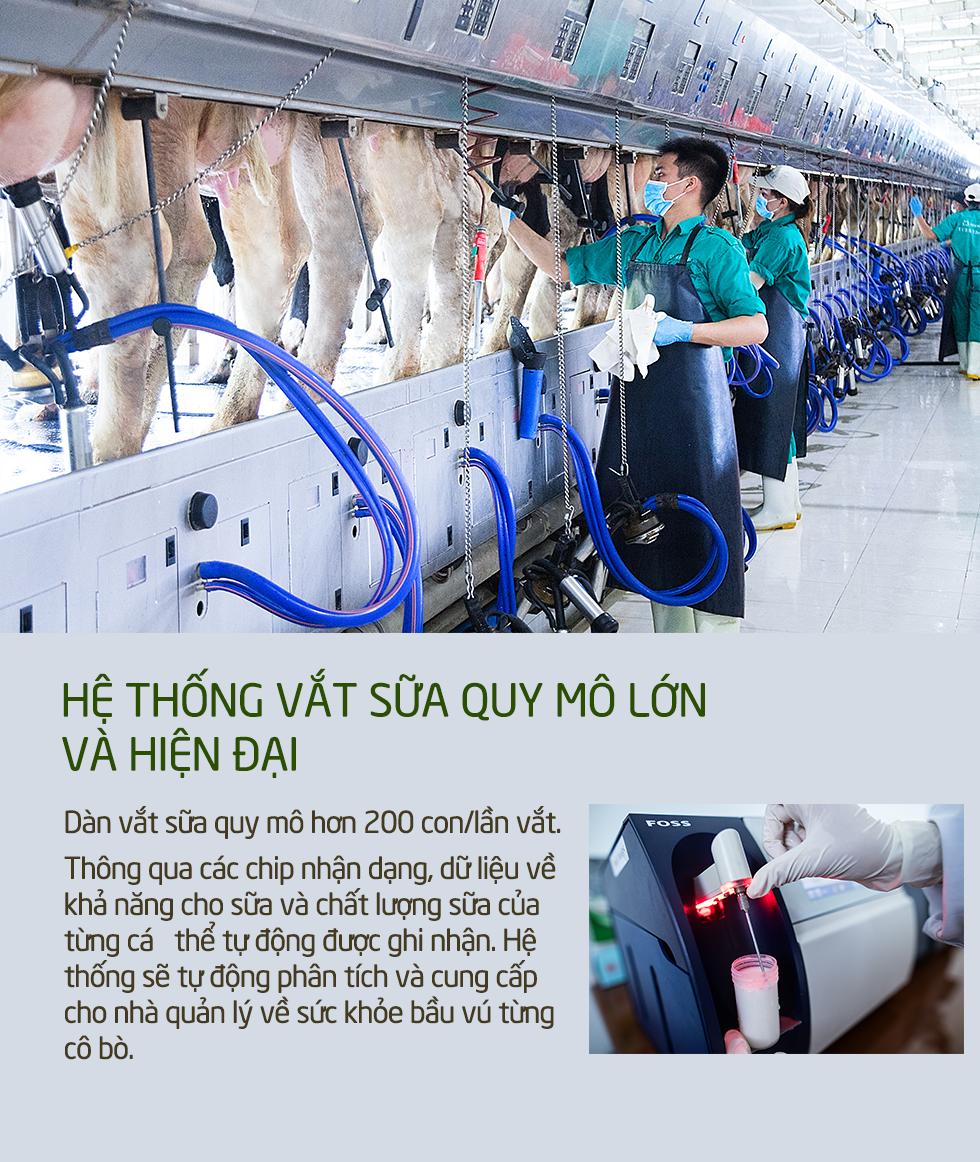 Khám phá các tiện nghi chuẩn 4.0 dành cho bò sữa của Vinamilk - Ảnh 10.