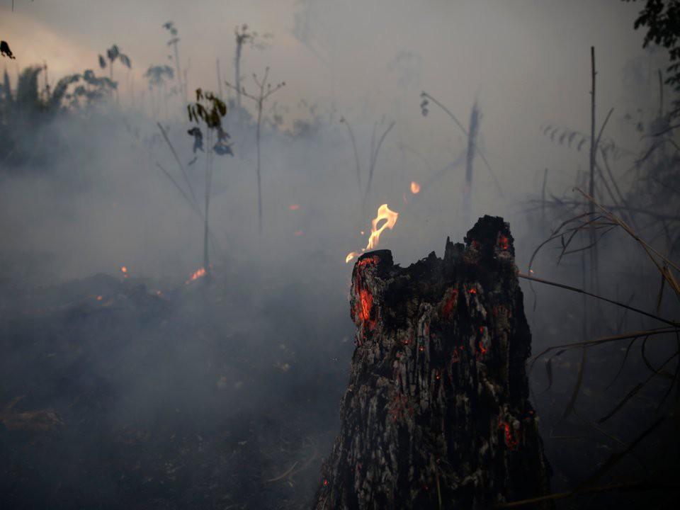 Thêm 2.000 đám cháy mới ở Amazon chỉ sau 2 ngày Brazil cấm đốt rừng - Ảnh 4.