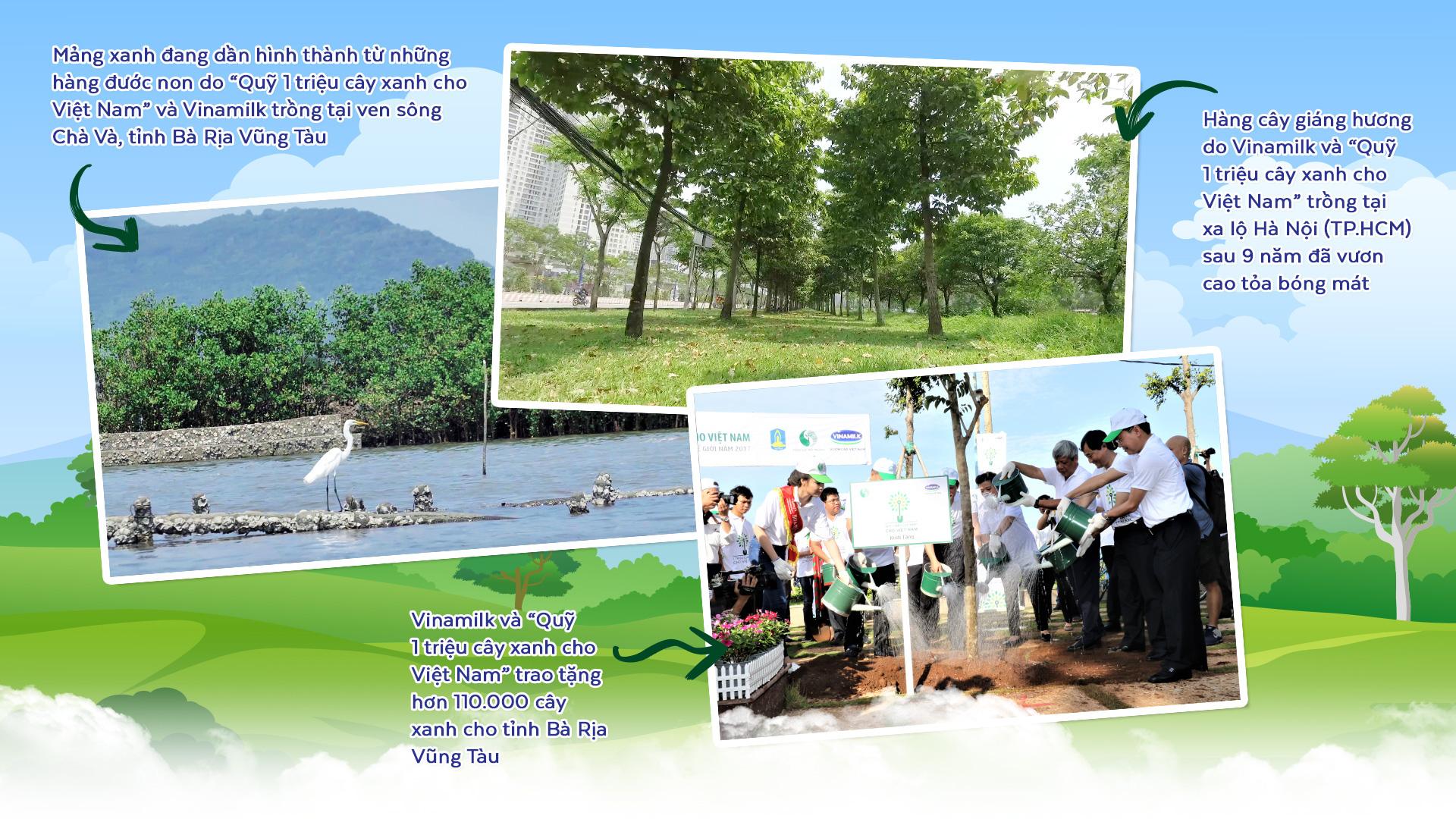 Triệu cây vươn cao - Hành trình xanh khởi đầu tương lai xanh - Ảnh 6.