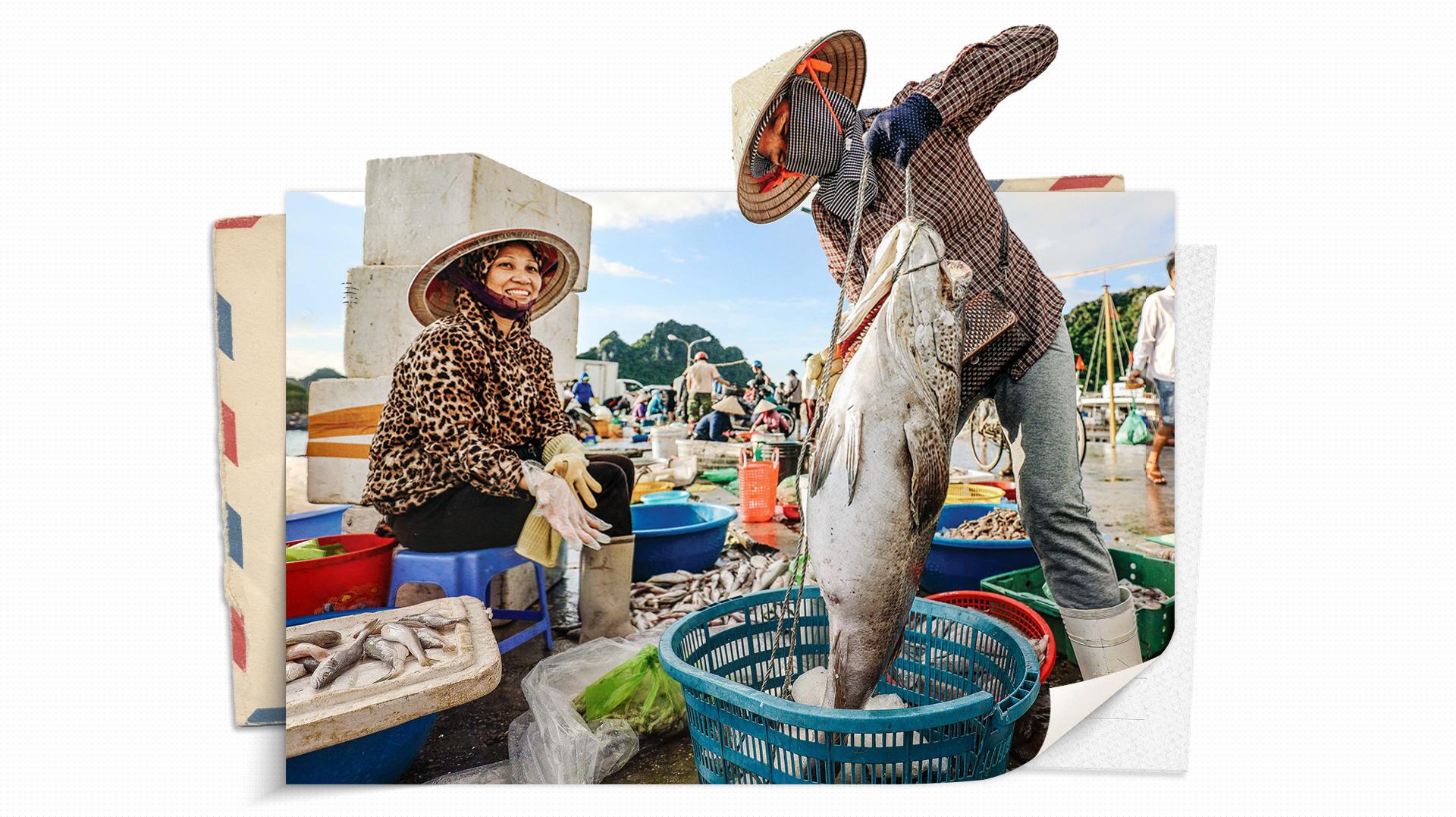 12 Huyện đảo Việt Nam chuỗi ngọc trên biển đông (P2)