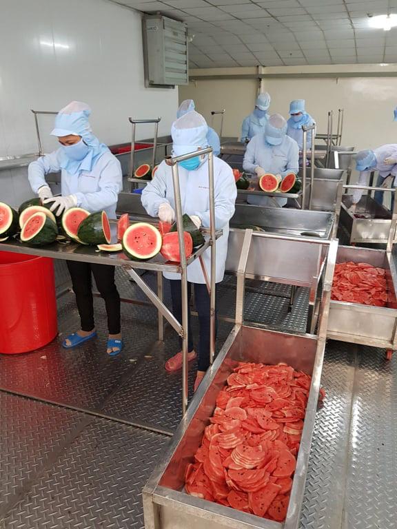 Bún dưa hấu và bánh tráng thanh long giải cứu nông sản thời dịch COVID-19 - Ảnh 2.