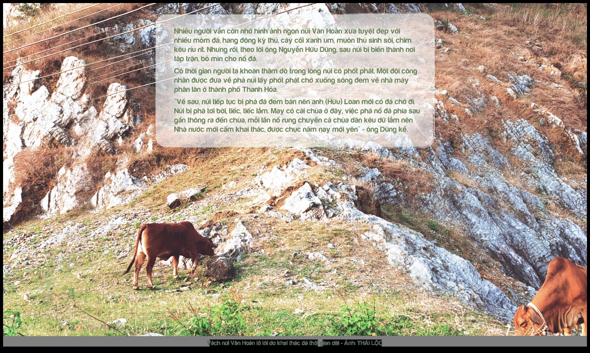 Kỳ 5: Nhà thơ tình đi thồ đá - Ảnh 7.
