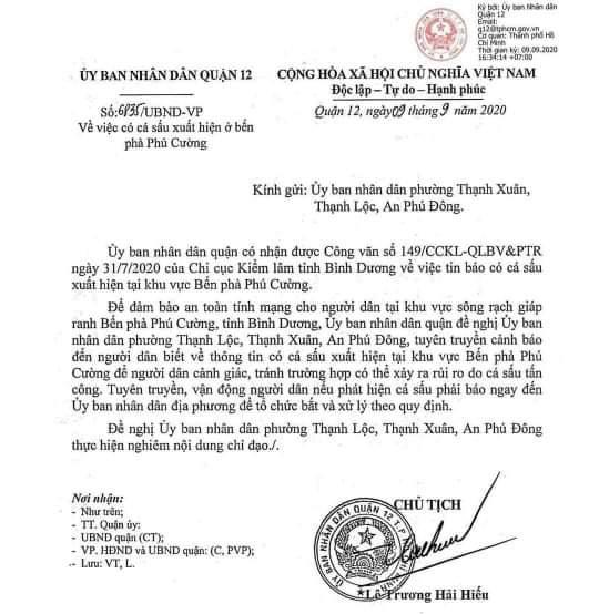 Quận 12 cảnh báo thông tin có cá sấu trên sông Sài Gòn - Ảnh 1.