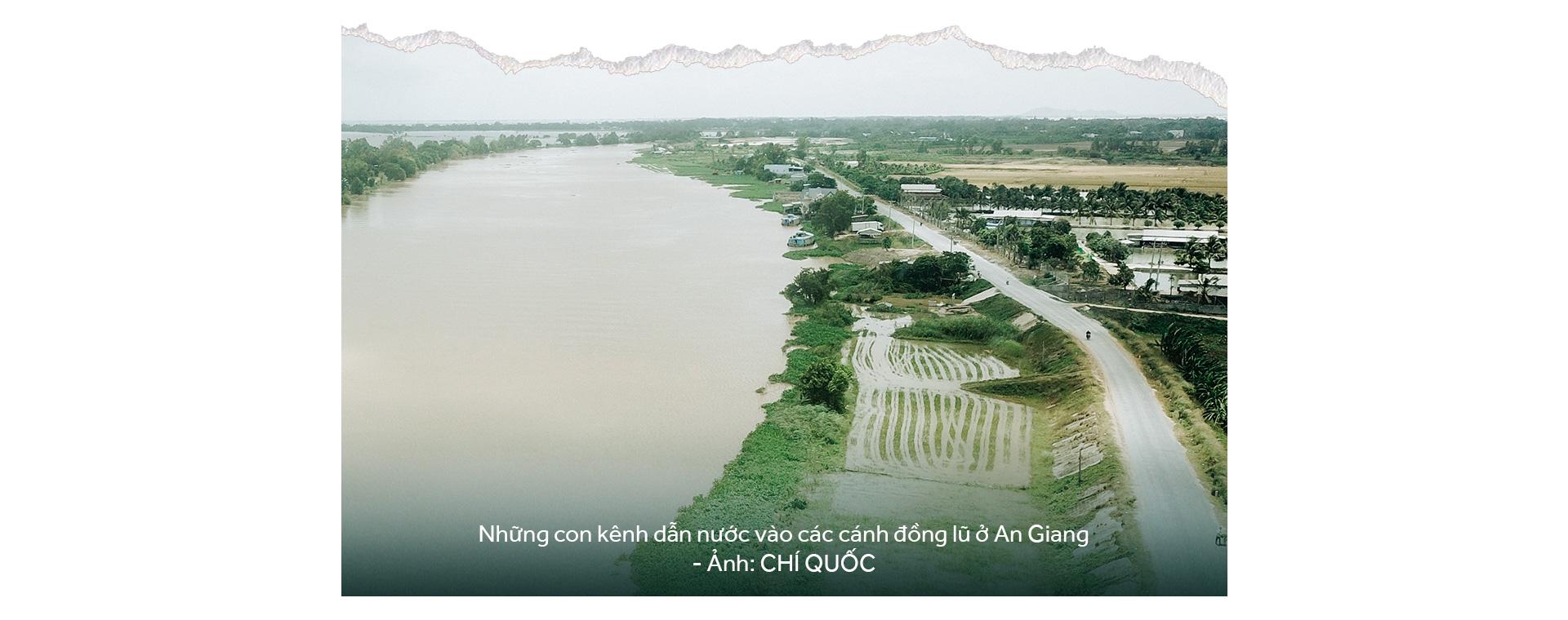 Đồng bằng sông Cửu Long: 35 năm thay da đổi thịt - Ảnh 37.