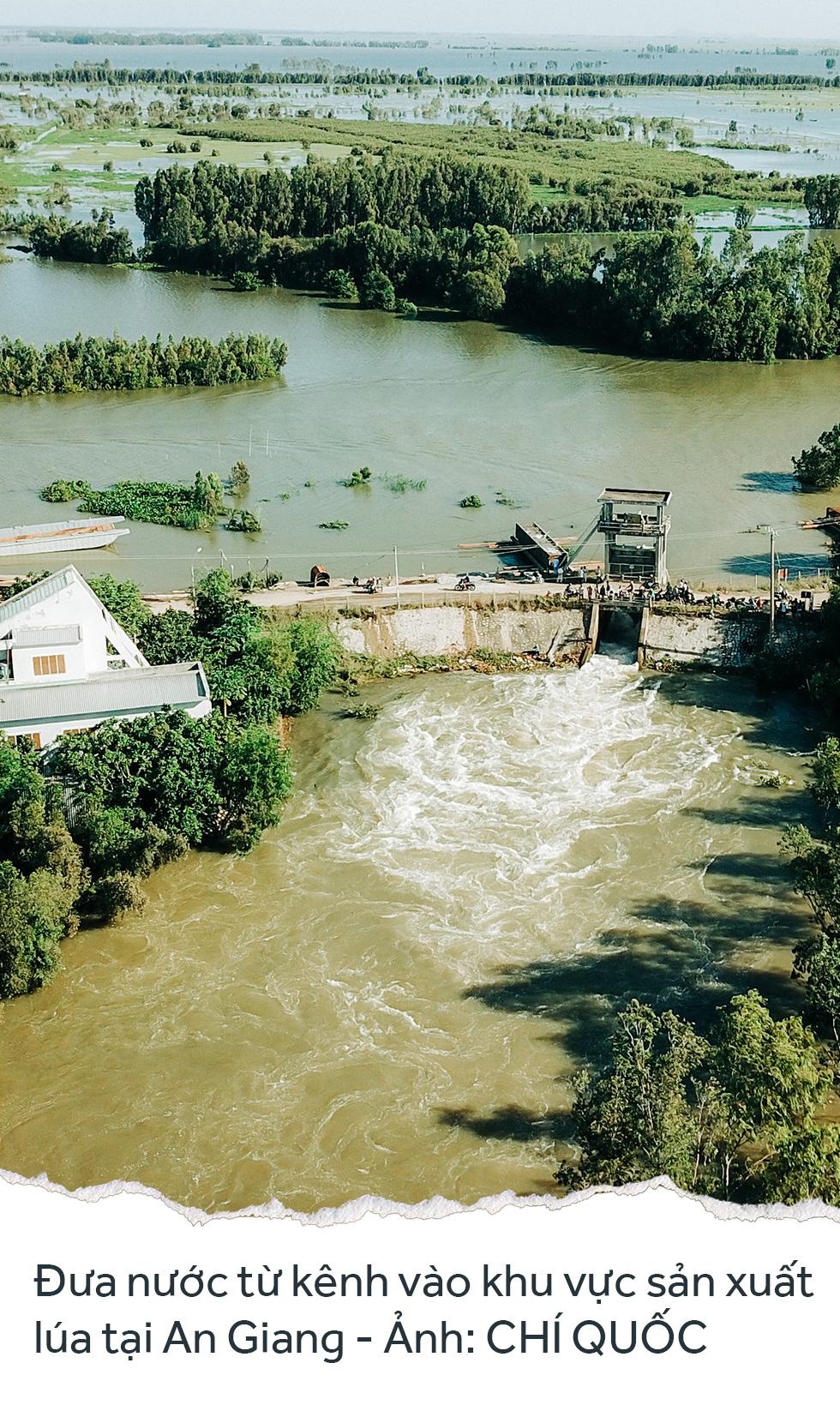 Đồng bằng sông Cửu Long: 35 năm thay da đổi thịt - Ảnh 38.