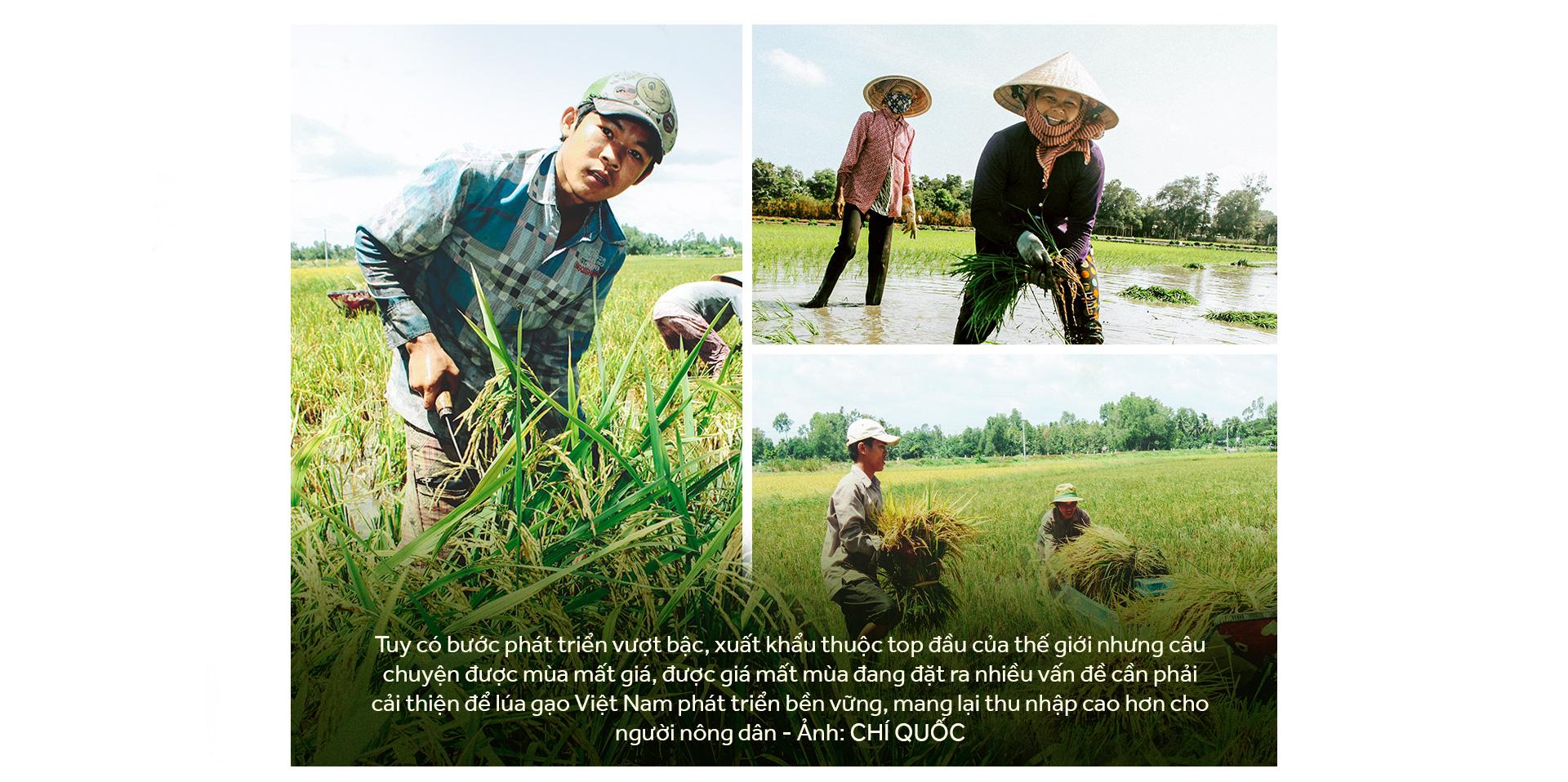 Đồng bằng sông Cửu Long: 35 năm thay da đổi thịt - Ảnh 5.