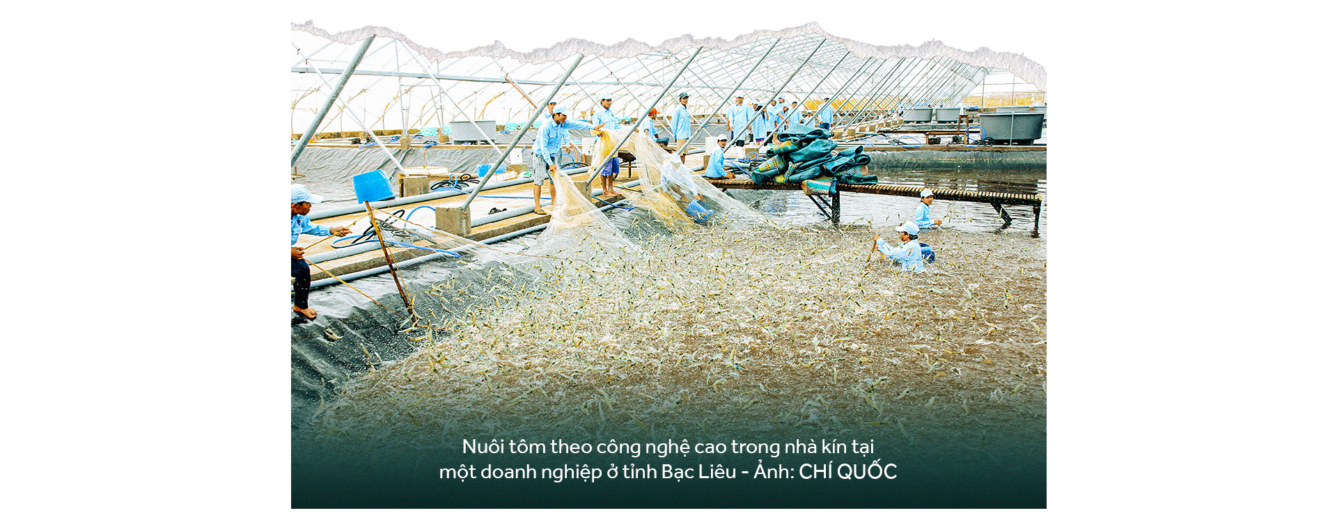Đồng bằng sông Cửu Long: 35 năm thay da đổi thịt - Ảnh 17.