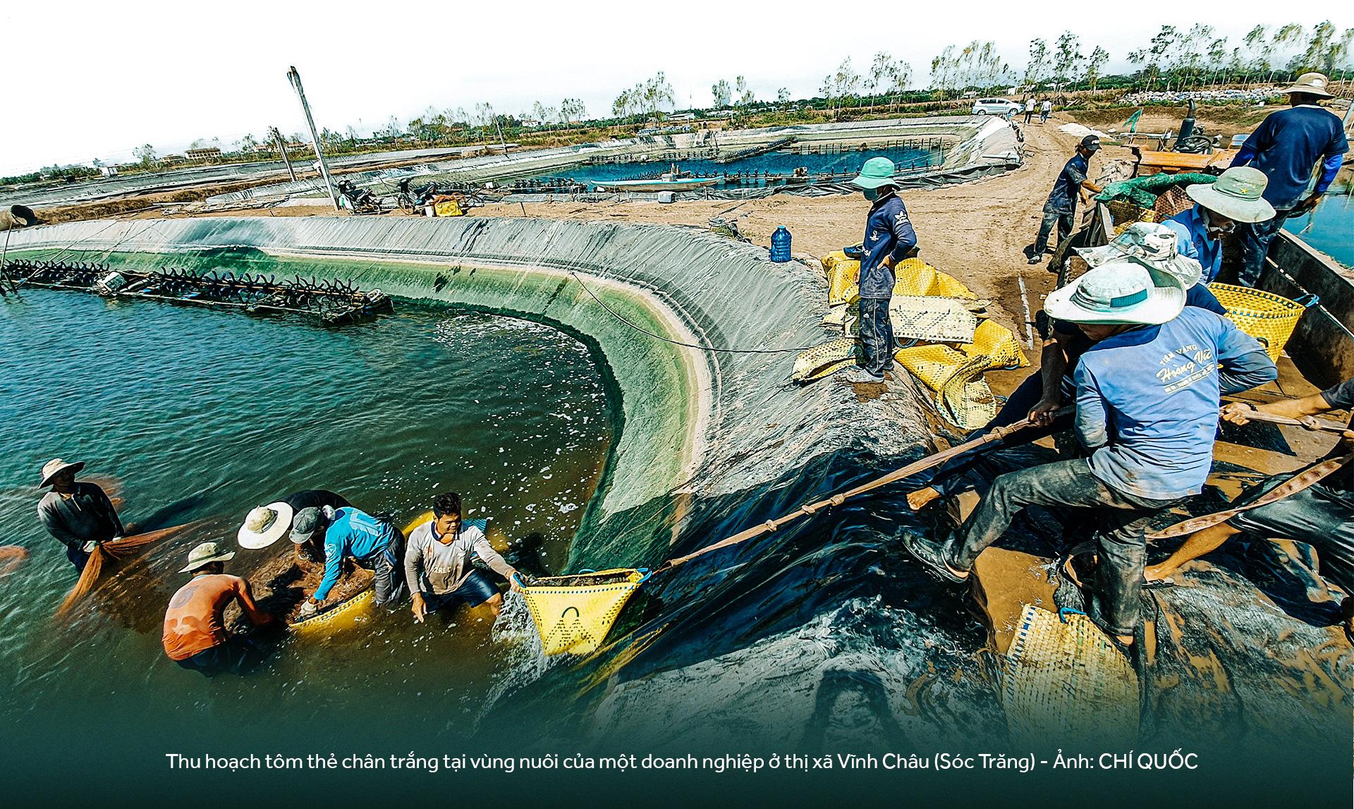 Đồng bằng sông Cửu Long: 35 năm thay da đổi thịt - Ảnh 15.