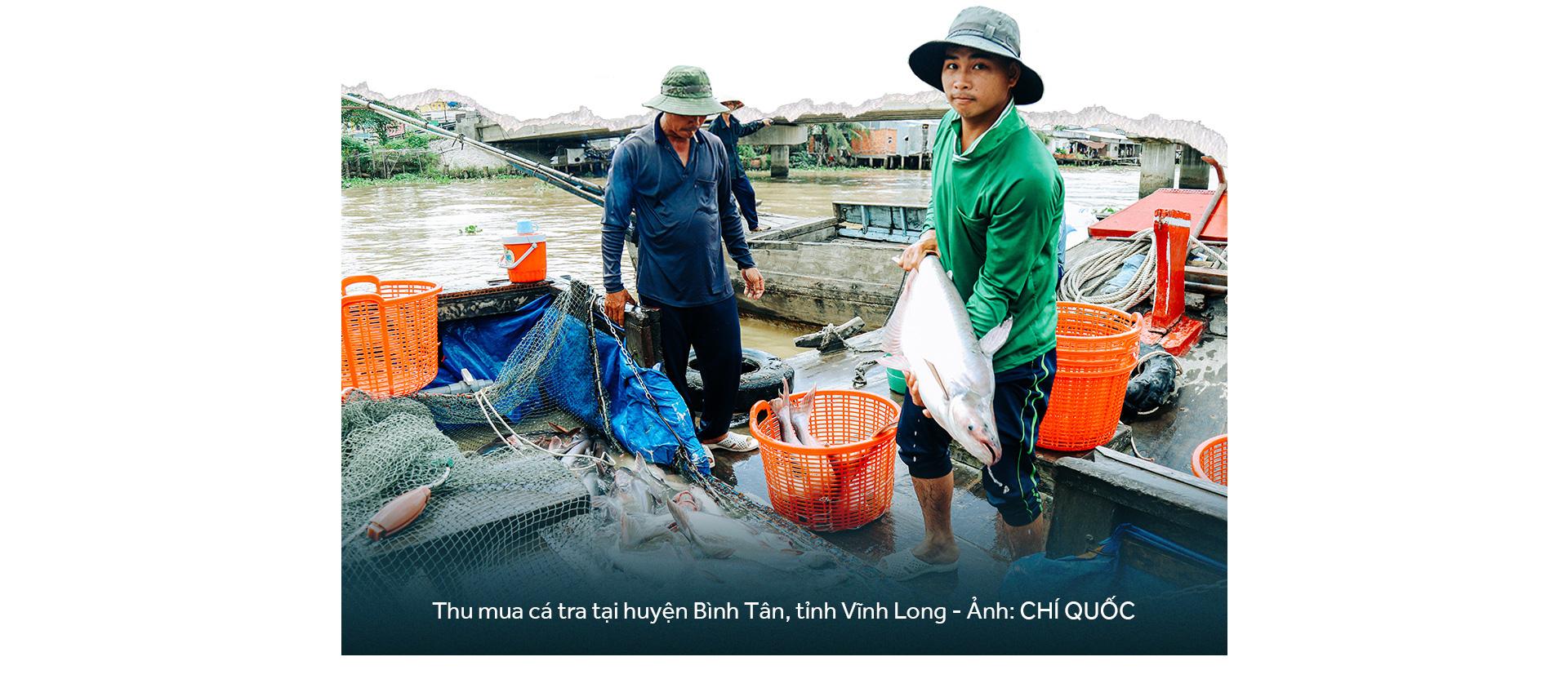 Đồng bằng sông Cửu Long: 35 năm thay da đổi thịt - Ảnh 25.