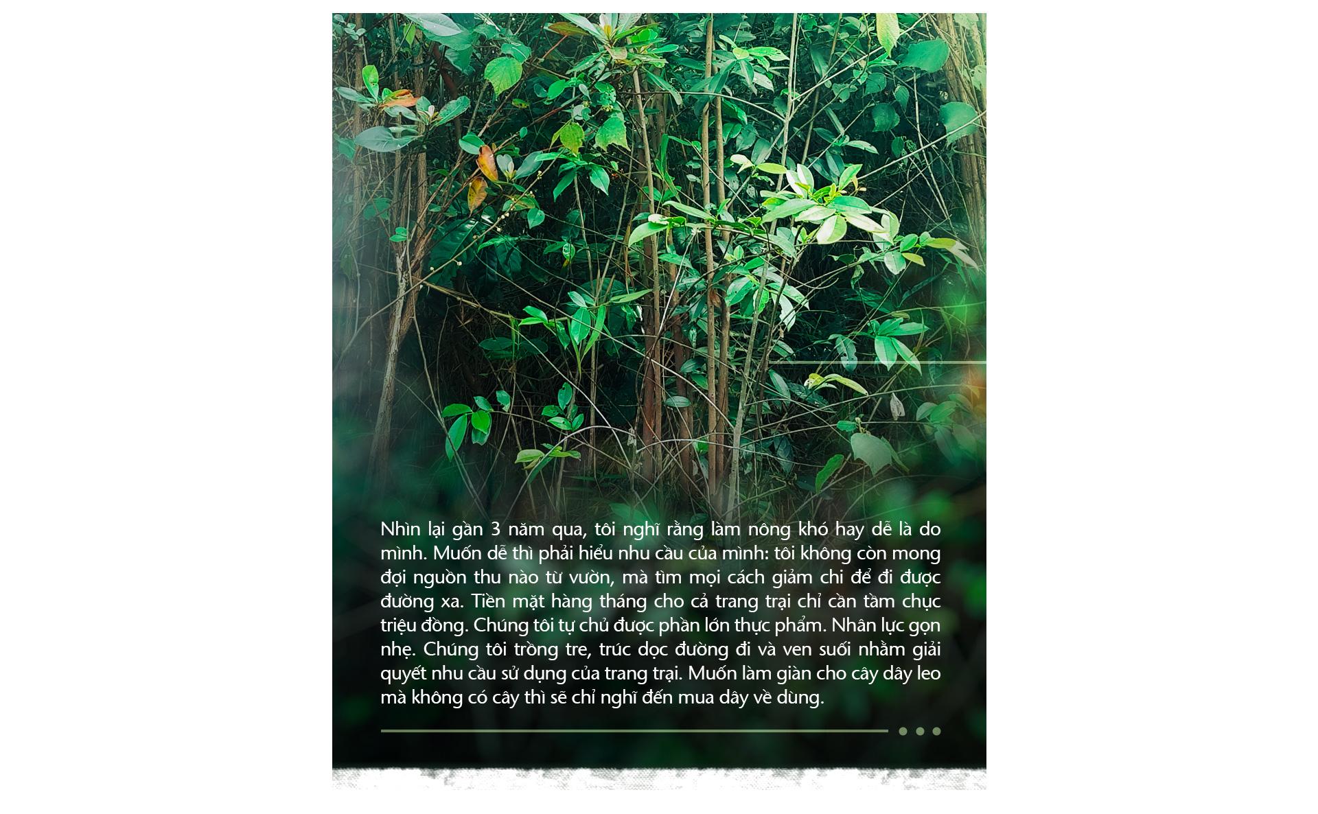 Trồng cây và nương tựa tự nhiên - Ảnh 10.