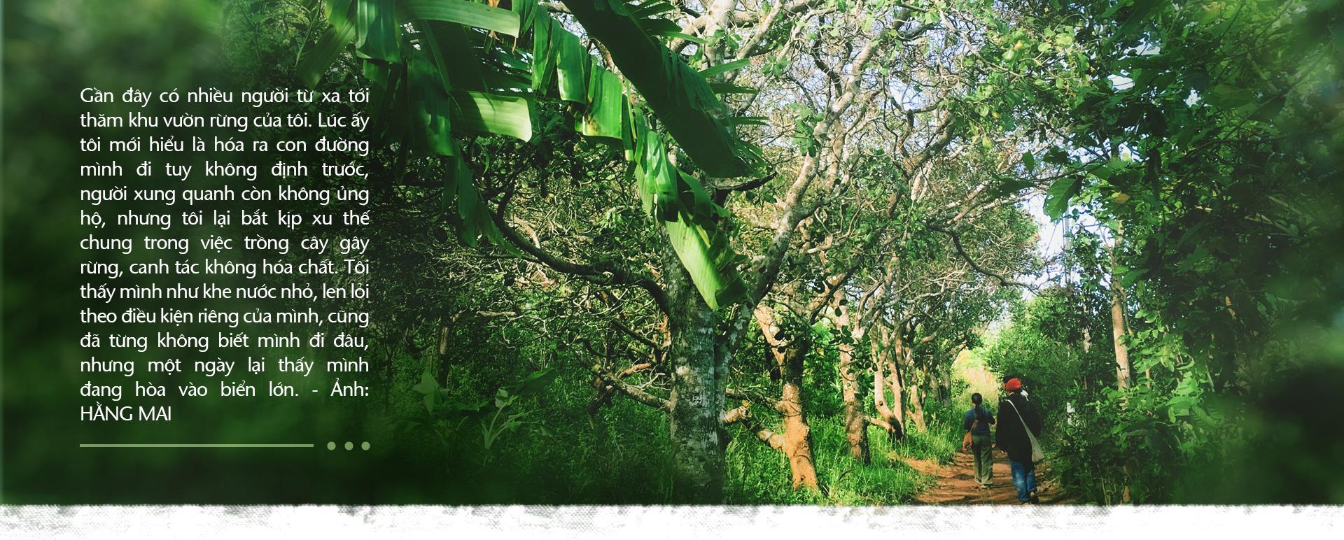 Trồng cây và nương tựa tự nhiên - Ảnh 4.