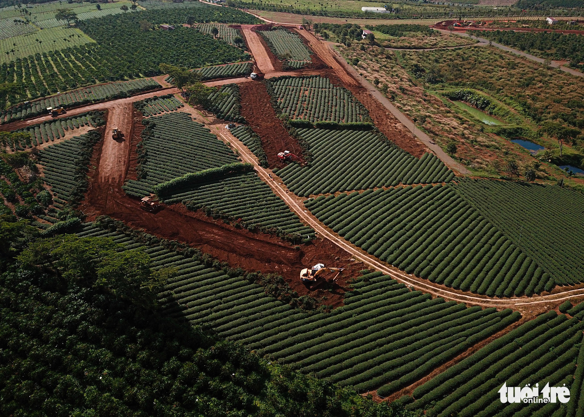 Thanh tra hoạt động phân lô bán nền ở Lâm Đồng, Khánh Hòa, Bình Thuận - Ảnh 1.