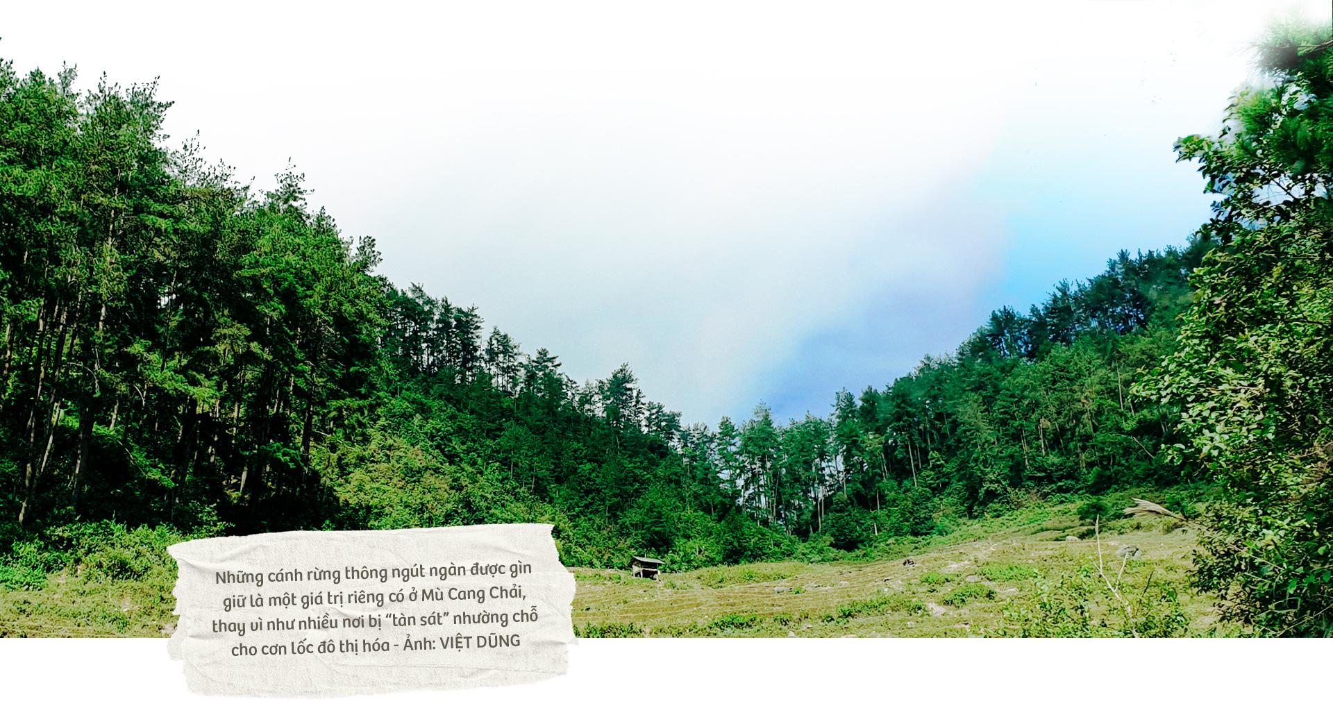 Mù Cang Chải: Thiên đường du lịch của Tây Bắc nay mai - Ảnh 5.