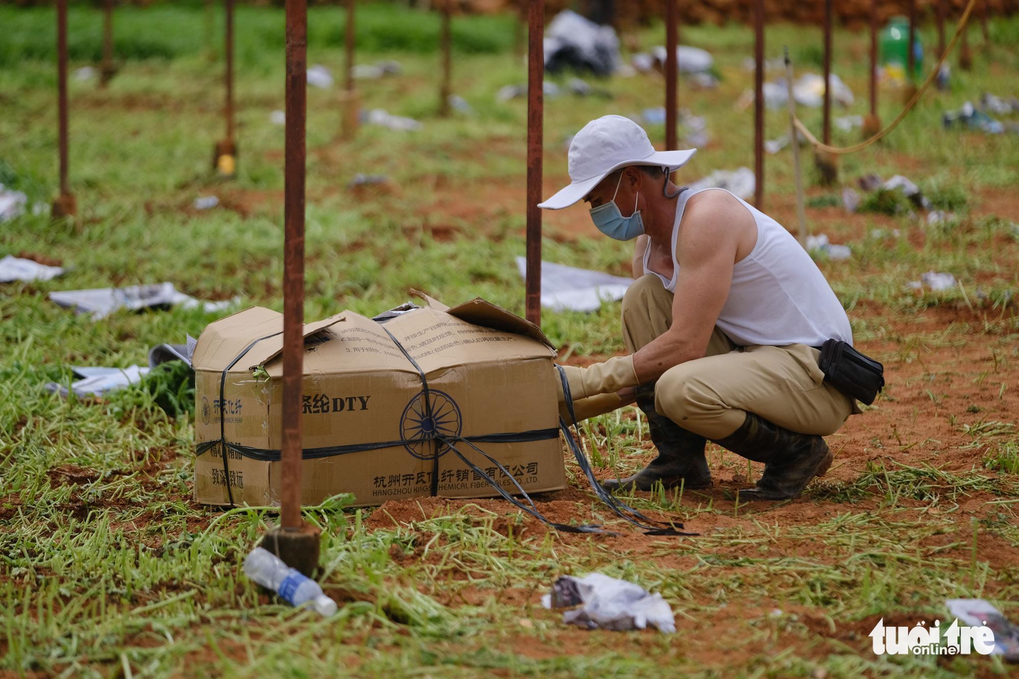 Người Đà Lạt hào phóng, tặng Sài Gòn nguyên vườn rau - Ảnh 4.