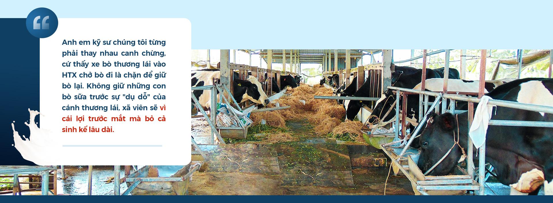 Tổng Giám đốc Evergrowth: 'Làm nông nghiệp thuần tuý thì không giàu khủng được - Ảnh 6.