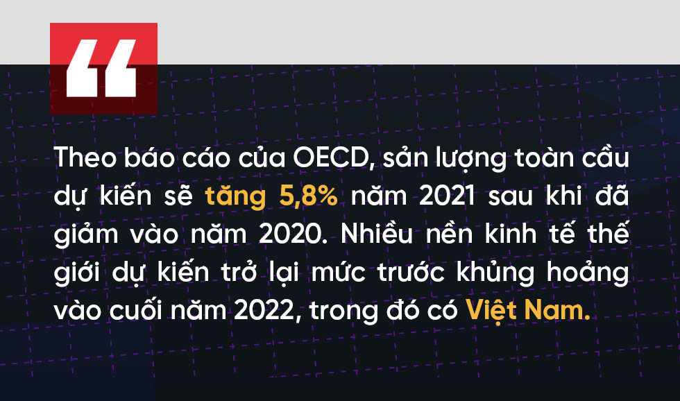 (Kì 4) COVID-19 và năng lực phục hồi của nền kinh tế - Ảnh 1.