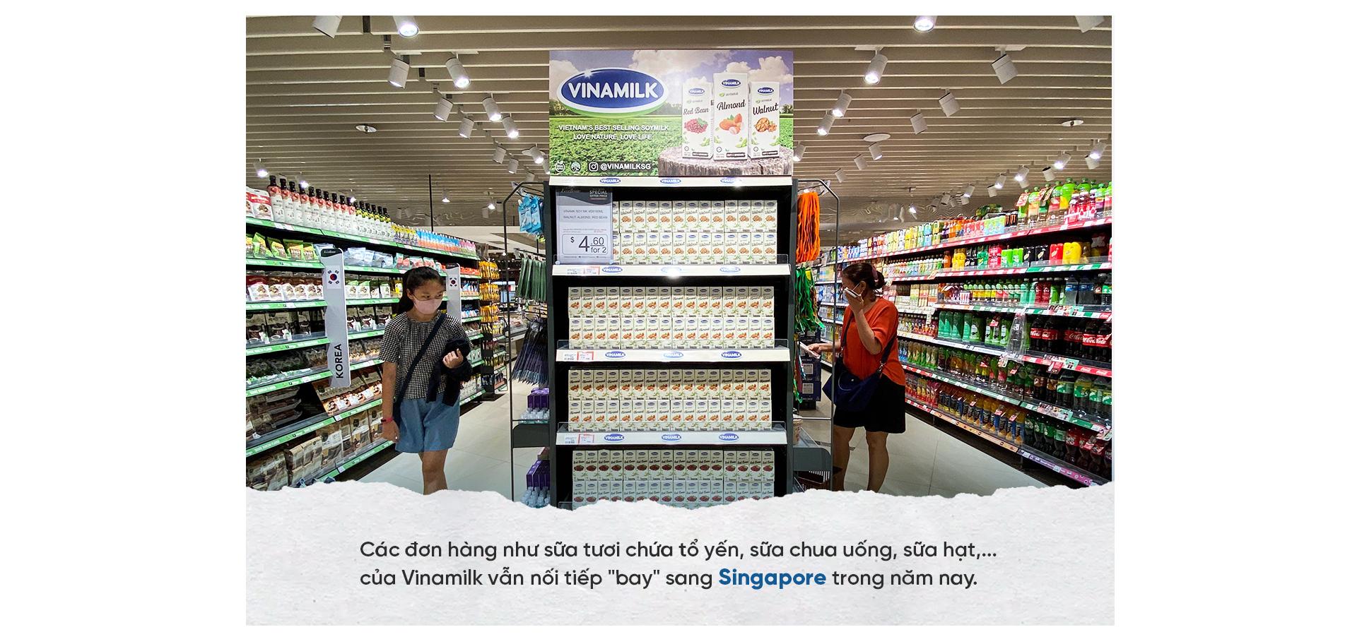 Vinamilk: Dấu son sữa Việt trên đấu trường quốc tế - Ảnh 14.