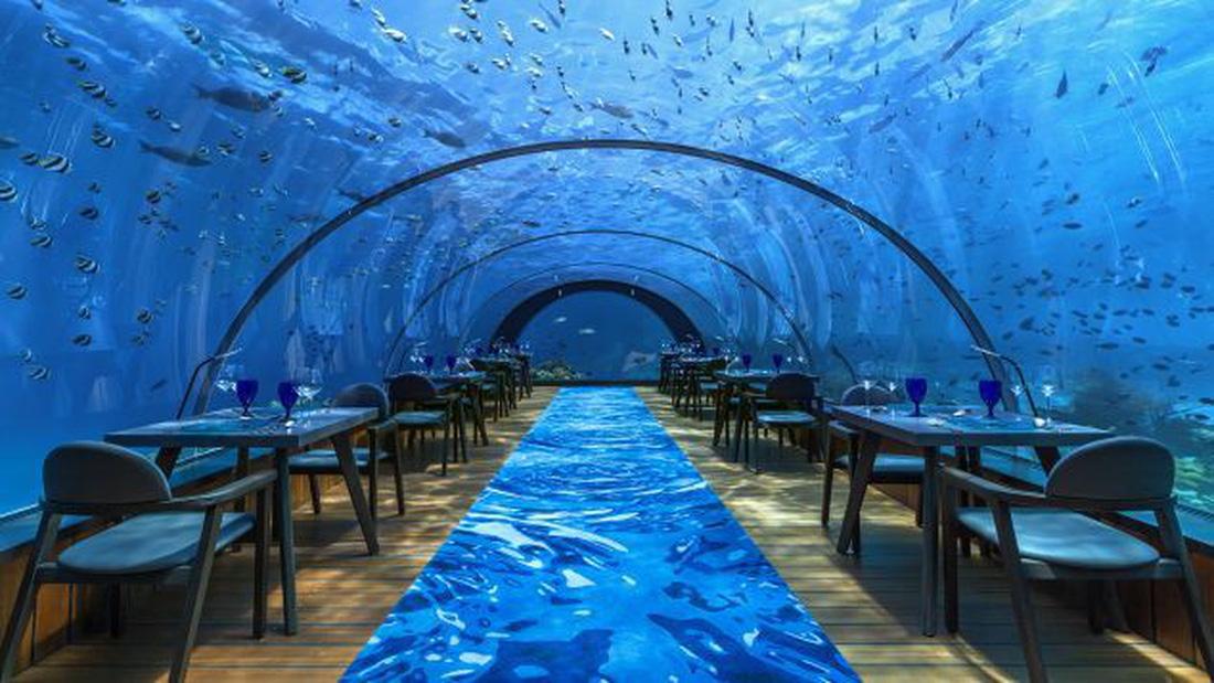 Ăn ngon tại nhà hàng dưới nước lớn nhất thế giới - Ảnh 2.