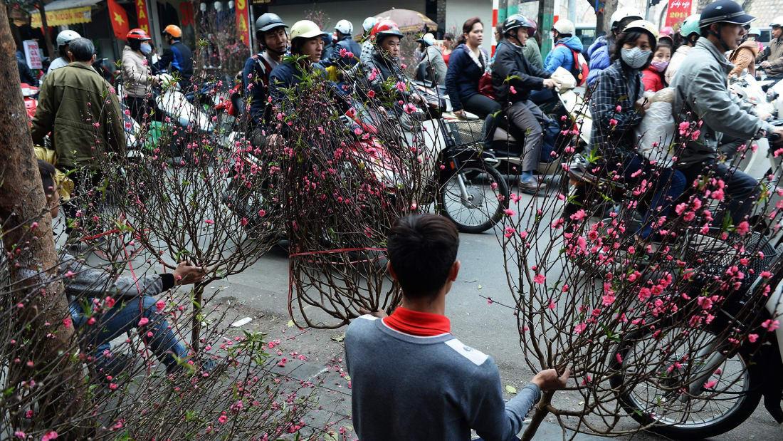 CNN chọn chợ hoa Quảng Bá, Hà Nội trong 14 điểm chơi Tết nổi bật - Ảnh 2.