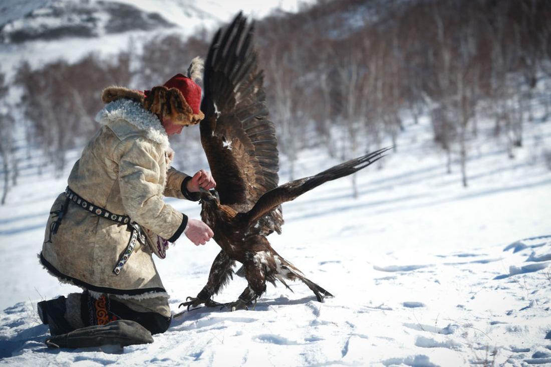 Lễ hội huấn luyện đại bàng ở Mông Cổ - Ảnh 1.
