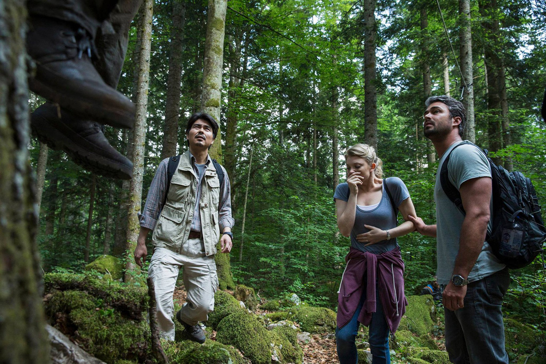Ngắm rừng cong Ba Lan, rừng ma Romania, rừng tre Nhật - Ảnh 13.