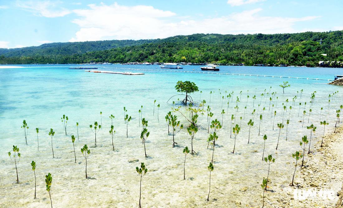 Đến Davao tắm biển, ngắm đại bàng - Ảnh 9.
