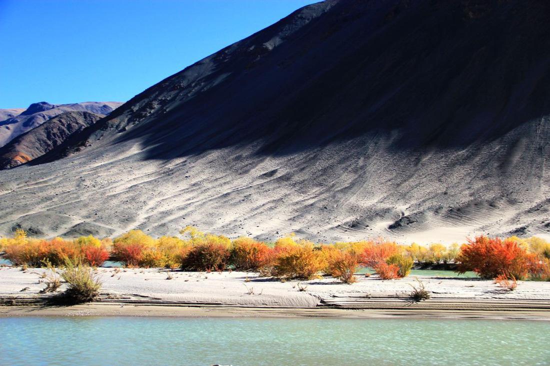 Làng du mục Korzok bình yên bên hồ Tso Moriri - Ảnh 5.