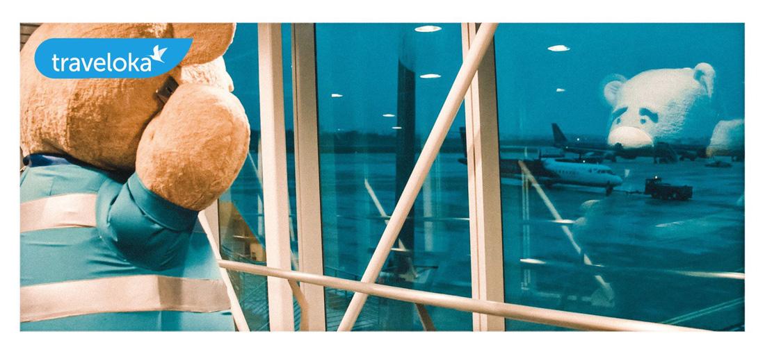 Gia đình gấu mập dễ thương làm xôn xao sân bay Đà Nẵng - Ảnh 2.
