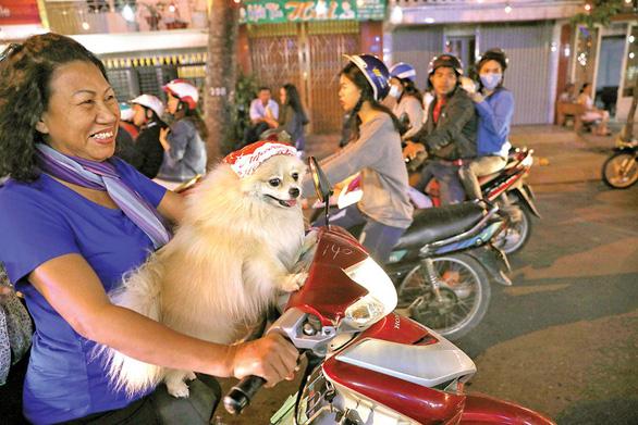 Xóm đạo Sài Gòn lung linh đón Giáng sinh - Ảnh 8.
