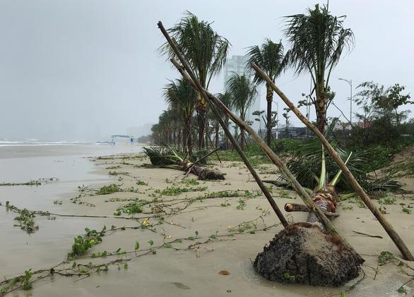 Đường ven biển Đà Nẵng tả tơi sau mưa lớn - Ảnh 1.