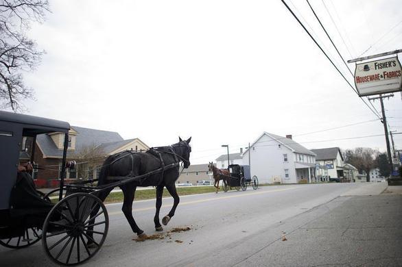 Xe hơi rồi cũng như ngựa, chỉ sở hữu cho vui? - Ảnh 1.