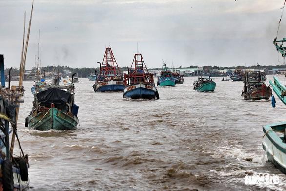 Ngư dân Cà Mau hối hả vào bờ trú bão - Ảnh 4.
