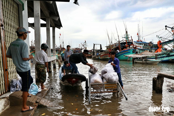 Ngư dân Cà Mau hối hả vào bờ trú bão - Ảnh 11.