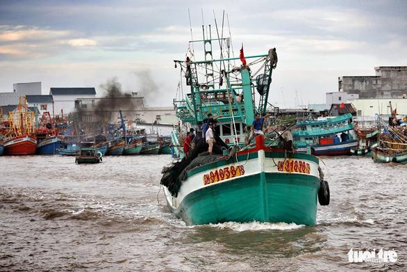 Ngư dân Cà Mau hối hả vào bờ trú bão - Ảnh 12.