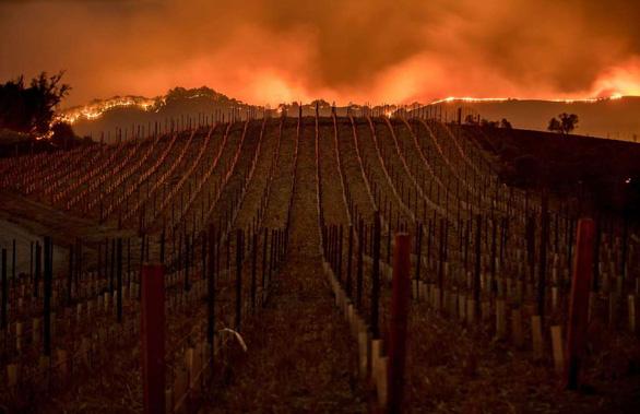 4 ngày chìm trong biển lửa của California - Ảnh 7.