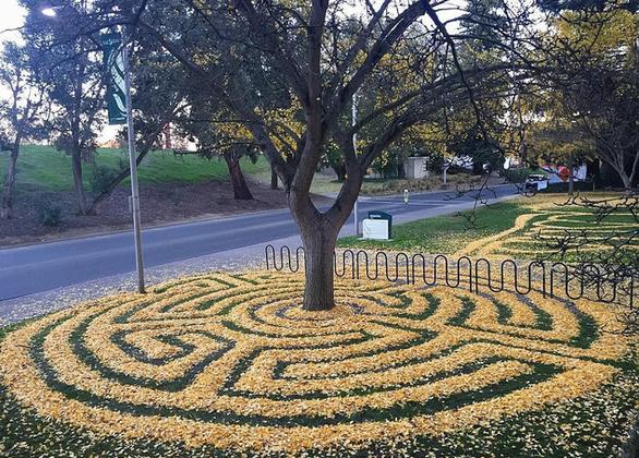 Những tác phẩm nghệ thuật từ lá cây rụng - Ảnh 5.