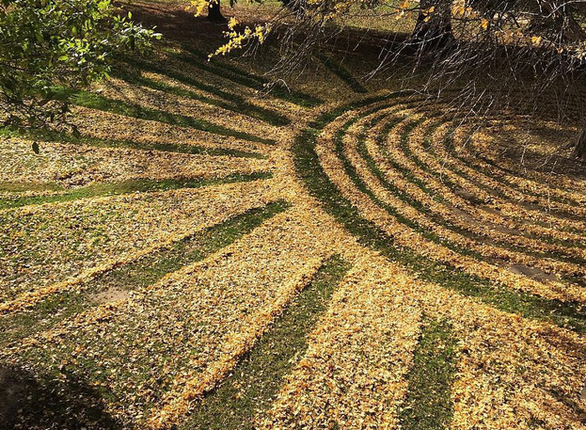 Những tác phẩm nghệ thuật từ lá cây rụng - Ảnh 6.