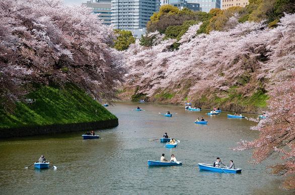 Đi đại thành phố Tokyo chơi gì, ăn gì, mua gì? - Ảnh 14.