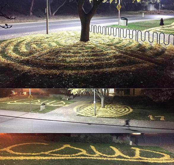 Những tác phẩm nghệ thuật từ lá cây rụng - Ảnh 9.