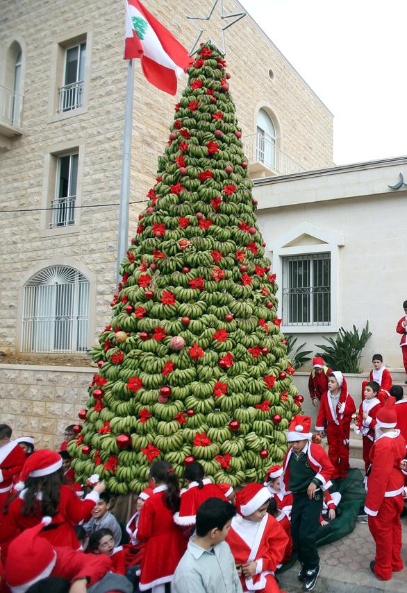 Tại sao Noel lại trang trí cây thông? - Ảnh 6.