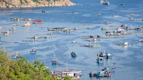 Kiến nghị cho làm du lịch ở đảo Bình Ba - Ảnh 1.