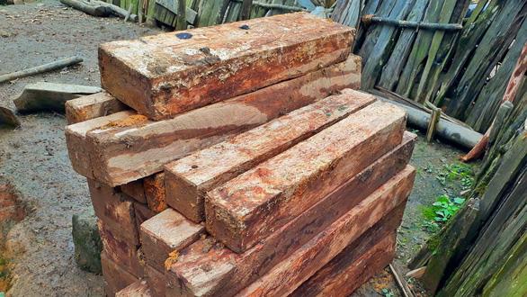 Sẽ kỷ luật cán bộ để tan nát rừng đầu nguồn Lào Cai, Yên Bái - Ảnh 8.