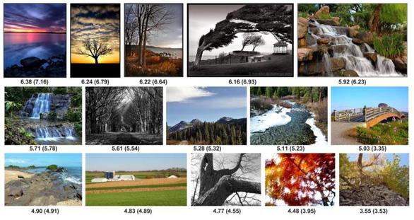 Google AI giúp bạn đánh giá 'độ đẹp' của hình ảnh - Ảnh 2.